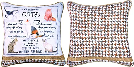 Manual Woodworker and Weavers Learn from Cats Dye Pillow
