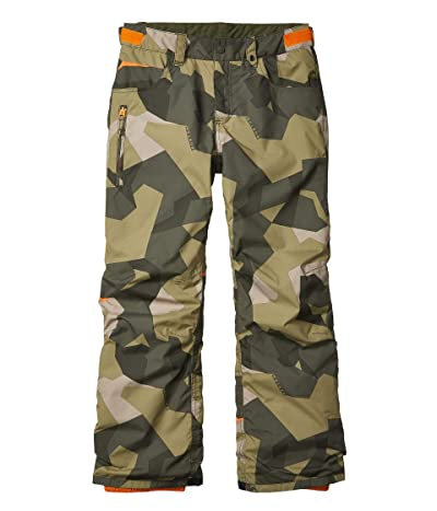 Burton Kids Barnstorm Pants (Little Kids/Big Kids) (Three Crowns Camo) Boy