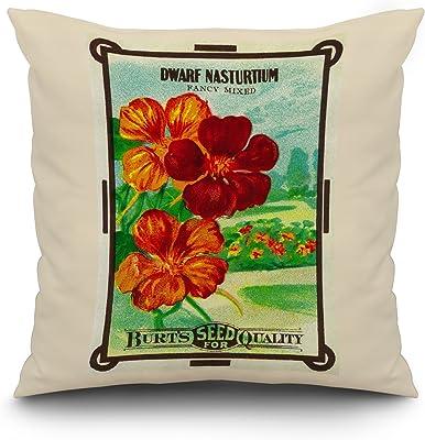 Amazon.com: Cuatro o clock semillas: Home & Kitchen