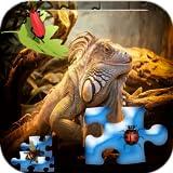 Puzzle Tiere