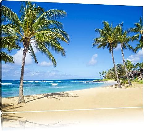 site de rencontre avec un palmier)
