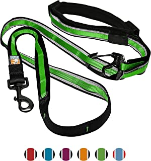 Kurgo 6 in 1 Hands Free Dog Leash   Reflective Running Belt Leash for Dogs   Crossbody & Waist Belt Leash   Carabiner Clip   Padded Handle   For Training, Hiking, or Jogging   Quantum Leash   6 colors