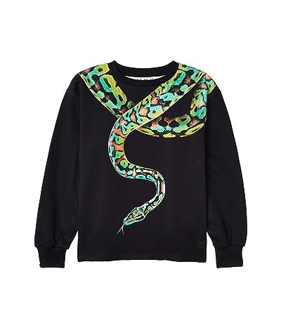 Molo Million Sweater (Little Kids/Big Kids) (Snake Charmer Green) Boy