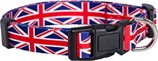 Native Pup Union Jack Dog Collar- UK Flag Dog Collar