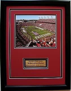 NCAA South Carolina Fighting Gamecocks Williams-Brice Stadium Framed Portrait Photo with Nameplate