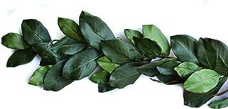 Mills Floral Magnolia Garland - Mountain 6', Green