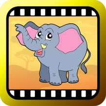 Video Touch - Wildlife