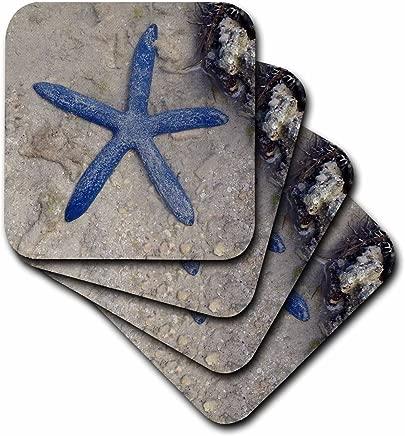 3dRose cst_22794_2 Rare Blue Sea Star Starfish Waters of Malolo Island Fiji Soft Coasters, (Set of 8)