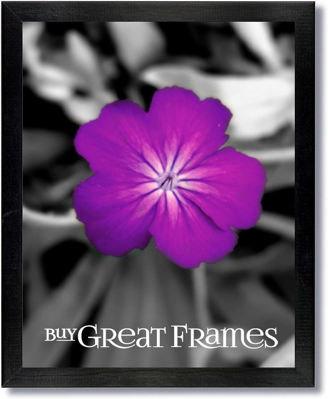 Set von 2 12 x 16 schwarz Holz Bilderrahmen und Glas klar B006K54PIM | Online einkaufen