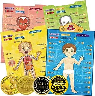 BEST LEARNING i-Poster بدن من - آناتومی انسانی تعاملی آموزشی سیستم بازی اسباب بازی برای یادگیری قطعات بدن ، ارگان ها ، ماهیچه ها و استخوان های کودکان در سنین 5 تا 12 سال