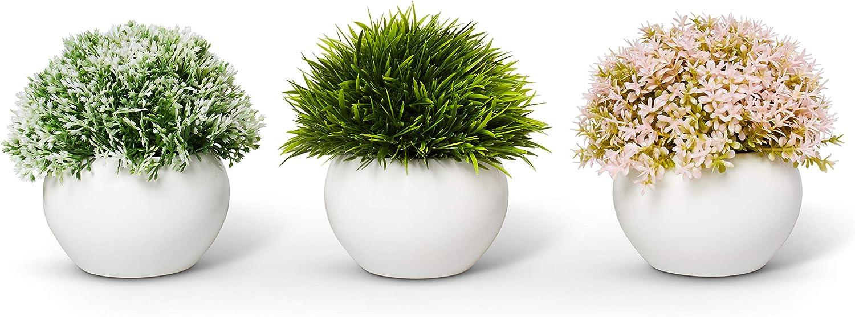 Genuine Mini Artificial Max 58% OFF Plants Modern Home Sm Decor Farmhouse