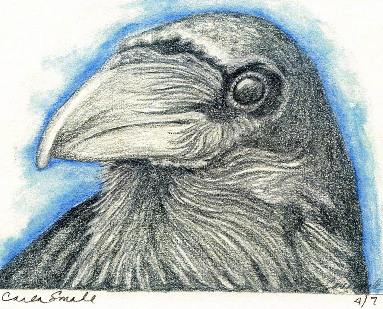 Crow Raven Bird Limited Edition Smale Sacramento Luxury Mall Print-Wildlife Art-Carla