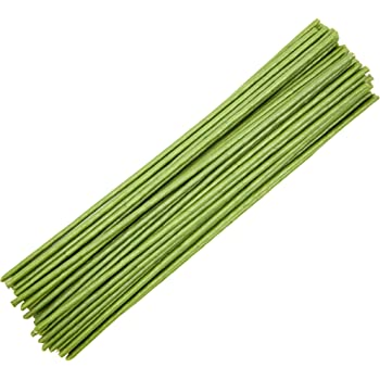 Bright Creations Floral Flower Wire Stems, Wrapped (45 Count) 3 Gauge, 16 Inch, Green