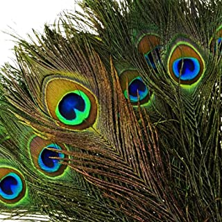"""100pcs Natural Peacock Feathers with Eye Peacock Tail Feathers 10"""" - 12"""" (25-30cm) Perfect for Wedding Party Arts and Craf..."""