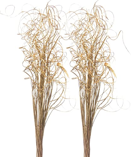 """popular Sparkle Glitter wholesale Curly Ting Ting Branches Vase Filler for Wedding, online sale Holiday & Home Decoration by Royal Imports, 26"""", 75 Stems (Gold) sale"""