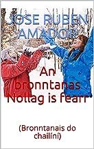 An bronntanas Nollag is fearr : (Bronntanais do chailíní) (Irish Edition)