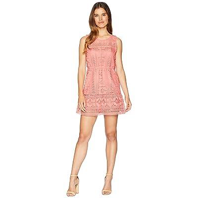 BB Dakota Sandra Lace Fit and Flare Dress (Sugar Coral) Women