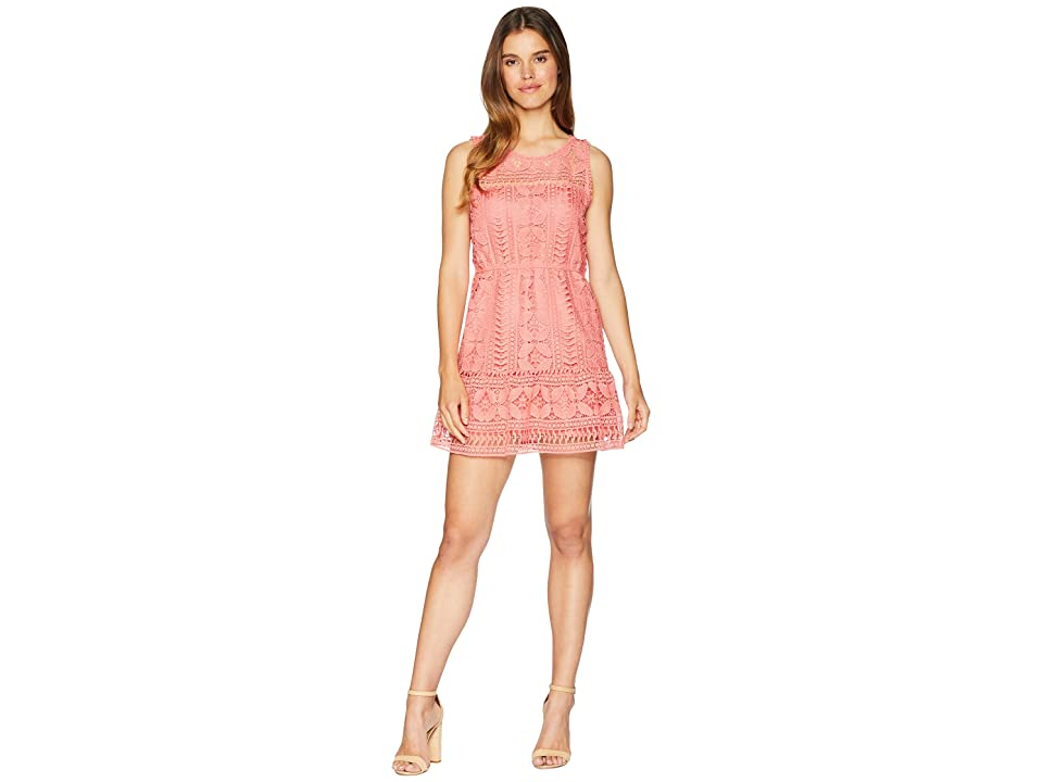 BB Dakota Sandra Lace Fit and Flare Dress (Sugar Coral) Women