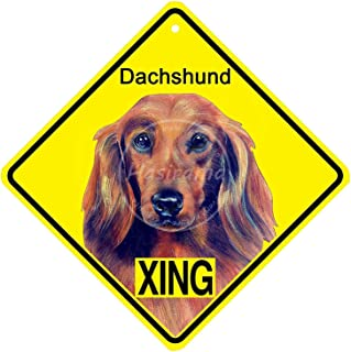 not Dachshund Xing Metal Wall Sign Tin Warning Hanging Signs Vintage Plaque Art Poster Painting Celebrity Yard Garden Door Bar Cafe Easter