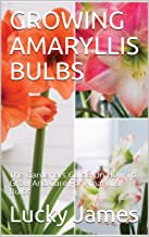 GROWING AMARYLLIS BULBS: The Gardeners Guide On How To Grow And Care For Amaryllis Bulbs