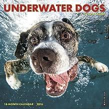 2016 Underwater Dogs Mini Wall Calendar