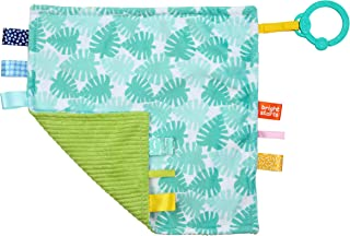 Bright Starts Little Taggies 2-Sided Soothing Blankie Take-Along Toy, Palms, Newborn +