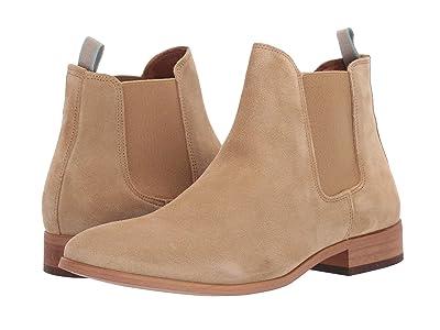 Shoe The Bear Dev S