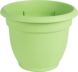 Best watering schedule for 5 gallon pots Reviews