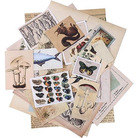 Autocollants de Scrapbooking,36 Pcs Ephemera Pack Vintage Sticker Set Vintage Stickers DIY Sticker décoratif Pack Autocollants Vintage Paquet de Papier pour Craft Notebook Album Cadeau Nature