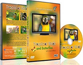 Relaxing Bird DVD - Tropical Birds and Butterflies with Classical Music of Chopin, Bach, Beethoven, Tchaikovsky - Perfect for a Relaxing Peaceful Moment and Entertaining Your Cats or Birds