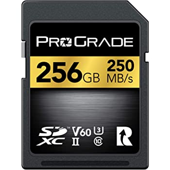 SD UHS-II 256GB Card V60 –Up to 130MB/s Write Speed and 250 MB/s Read Speed | for Professional Vloggers, Filmmakers, Photographers & Content Curators – by Prograde Digital
