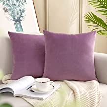 YESHOME Pack of 2 Throw Pillow Covers Lavender Purple Decorative with Soft Velvet Solid Cushion Cover Bedroom Office Car 16x16