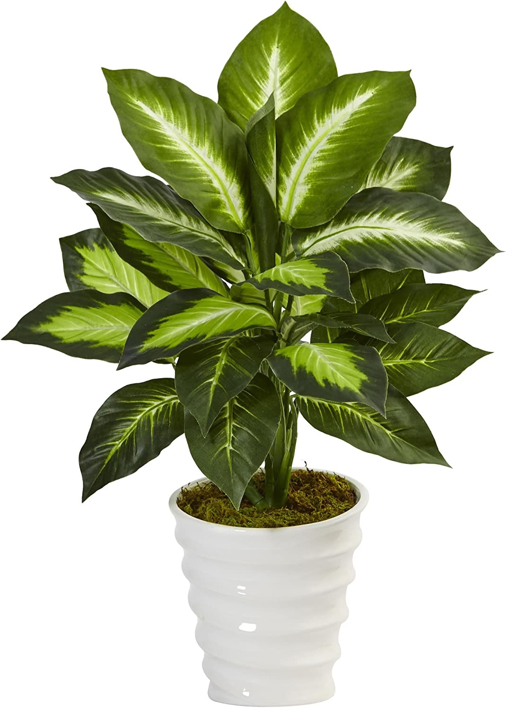 Nearly Natural 22in. Dieffenbachia Planter Artificial Swirl Super sale period limited All items in the store Silk