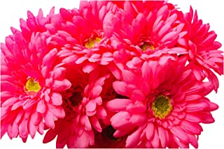 CraftMore 14 Inch Pink Gerbera Daisy Stems Set of 12