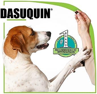 Nutramax Laboratories Dasuquin with MSM Soft Chews