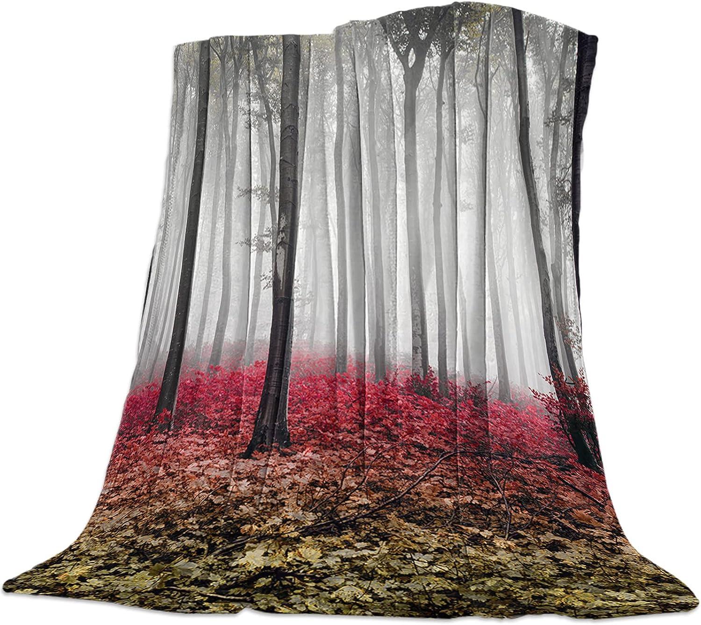 Ranking TOP20 SODIKA Fleece Bed Blanket Throw Shipping included Plush Su Fuzzy Lightweight