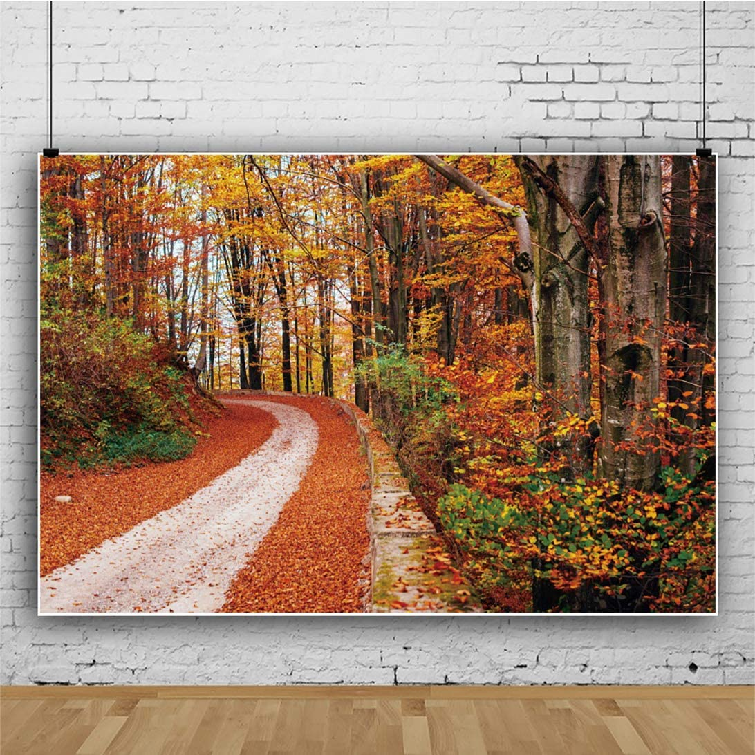 Leowefowa Autumn Maple Forest Curving Road Backdrop for Photography 12x10ft Fall Scenery Vinyl Photo Background Child Baby Adult Photo Shoot Event Activities Video Record Wallpaper