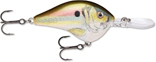 Rapala Dives-to 14 Live DT14RSL: Dives-to 14 Live River Shad