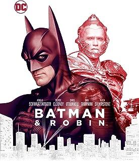 the batman robin