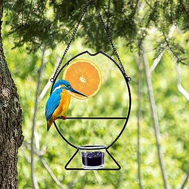 Prsildan Metal Hanging Oriole Bird Feeder with Fruit Holder Removable Drink Glass for Garden Patio Trunk Outside (Black)