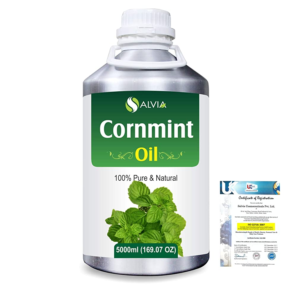 娯楽小包クリエイティブCornmint Oil (Mentha arvensis) 100% Natural Pure Essential Oil 5000ml/169fl.oz.