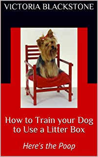How to Train your Dog to Use a Litter Box: Here's the Poop