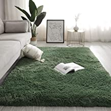 Velvet Shag Area Rug,Bygroscopic and Breathable Modern Indoor Plush Fluffy Rugs Extra Soft and Comfy Carpet Nursery Rugs f...