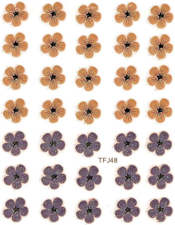 ディーラー位置づけるファン押し花 ネイルシール 花柄 選べる48種パッケージ入り (F48)