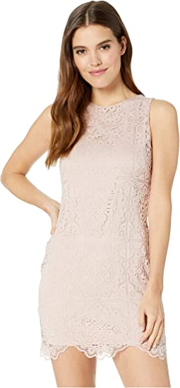 Ace Of Lace stretch Lace Dress