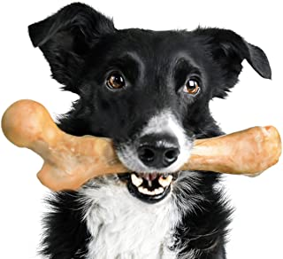 Pet Qwerks Boar BarkBone Pork Chop Flavor Chew Toy - For Aggressive Chewers, Tough Durable Extreme Power Chew Toy, Indestr...