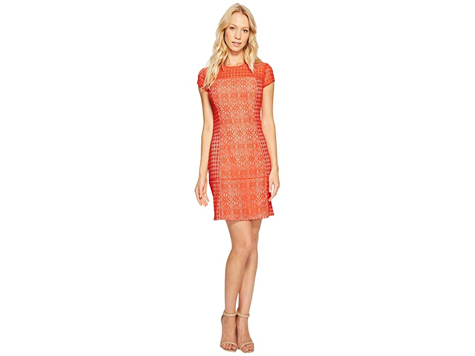 Jessica Simpson Short Sleeve Lace Dress (Red) Women