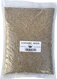 Rex Products,INC Canary Seed 5 LB - Plain 100% Seed