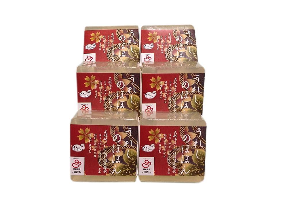 ラジエーター赤市場嬉野温泉(spa-ureshino) うれしのほほん 石鹸セット 6個セット