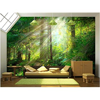 "wall26 - Beautiful Forest Wallpaper- Canvas Art Wall Mural Decor - 100""x144"""